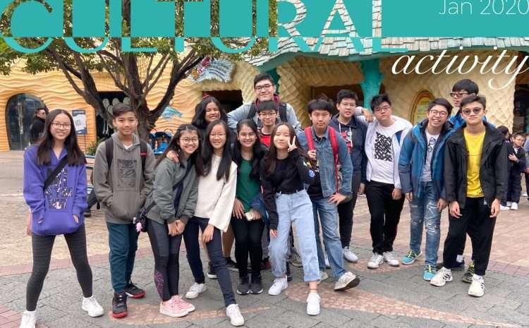 Ocean Park Cultural Activity